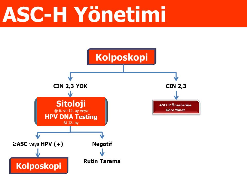 Negatif Rutin Tarama ≥ASC veya HPV (+) CIN 2,3CIN 2,3 YOK *Gebe, adölesan ve postmenopozal hastalarda yönetim değişir *Gebe, adölesan ve postmenopozal hastalarda yönetim değişir Non-pregnant ve Lezyon YokECC tercih edilir Yetersiz Kolposkopi ECC tercih edilir Yeterli Kolposkopi ve Lezyon VarECC Yapılabilir Kolposkopi Sitoloji @ 6.