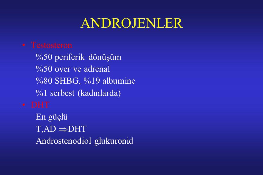 ANDROJENLER Testosteron %50 periferik dönüşüm %50 over ve adrenal %80 SHBG, %19 albumine %1 serbest (kadınlarda) DHT En güçlü T,AD  DHT Androstenodio