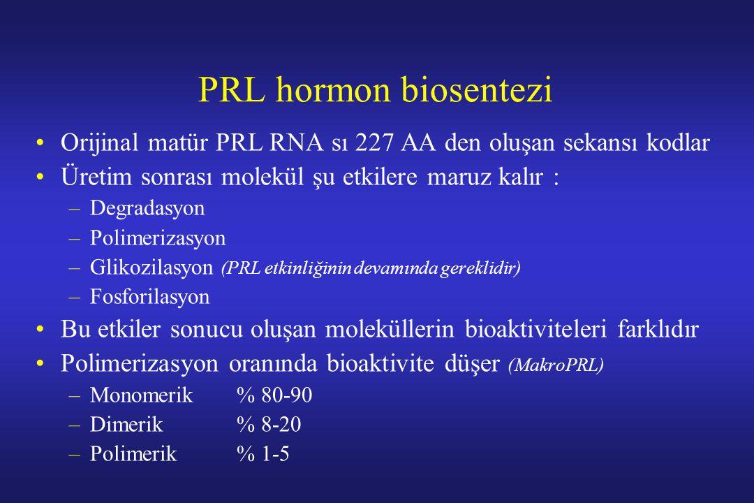 PRL hormon biosentezi Orijinal matür PRL RNA sı 227 AA den oluşan sekansı kodlar Üretim sonrası molekül şu etkilere maruz kalır : –Degradasyon –Polime