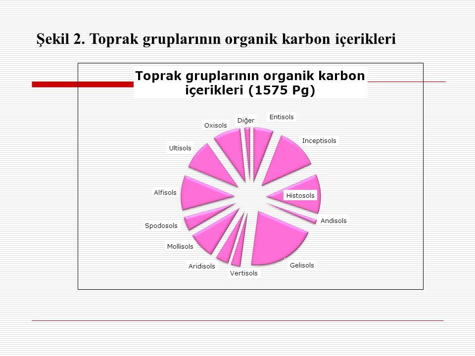 Şekil 2. Toprak gruplarının organik karbon içerikleri