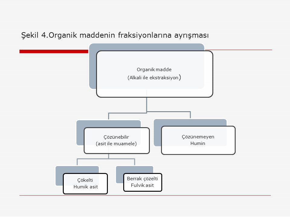 Şekil 4.Organik maddenin fraksiyonlarına ayrışması Organik madde (Alkali ile ekstraksiyon ) Çözünebilir (asit ile muamele) Çökelti Humik asit Berrak çözelti Fulvik asit Çözünemeyen Humin
