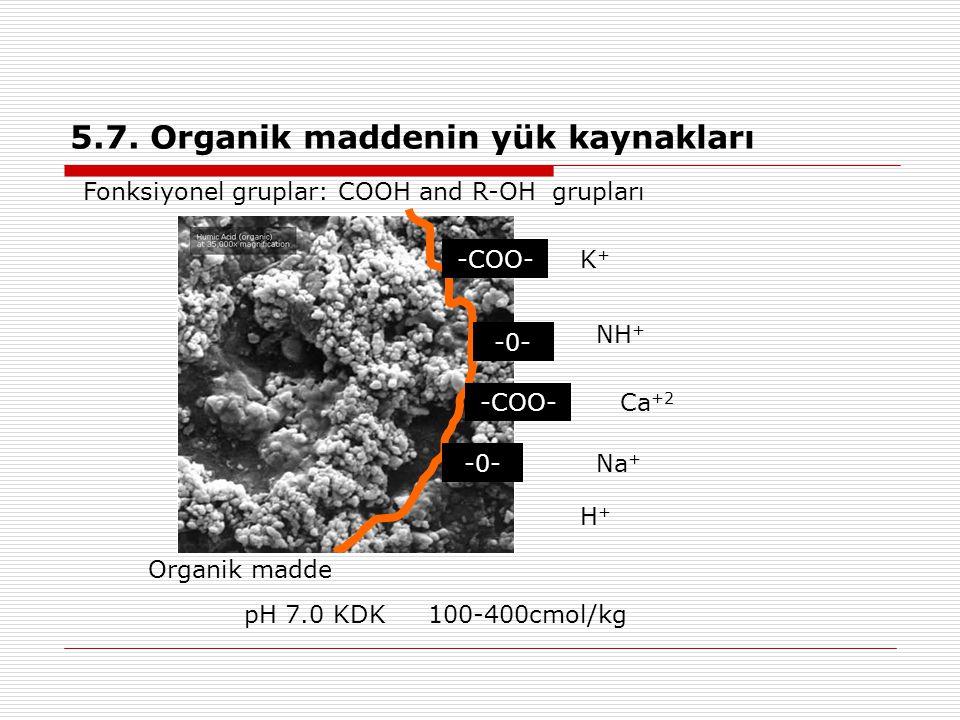 5.7. Organik maddenin yük kaynakları Organik madde K+K+ NH + Ca +2 Na + H+H+ pH 7.0 KDK 100-400cmol/kg -COO- -0- -COO- -0- Fonksiyonel gruplar: COOH a
