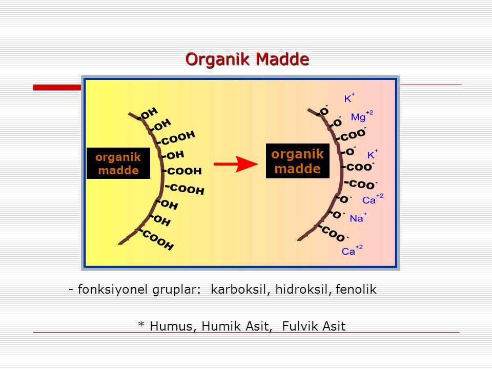 - fonksiyonel gruplar: karboksil, hidroksil, fenolik * Humus, Humik Asit, Fulvik Asit organik madde Organik Madde