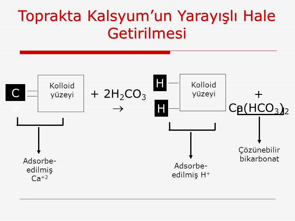 Toprakta Kalsyum'un Yarayışlı Hale Getirilmesi Kolloid yüzeyi CaCa + 2H 2 CO 3  H H + Ca(HCO 3 ) 2 Kolloid yüzeyi Adsorbe- edilmiş Ca +2 Çözünebilir bikarbonat Adsorbe- edilmiş H +