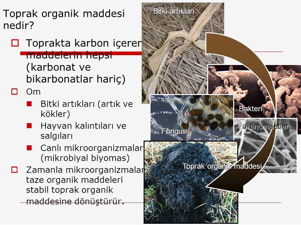 Toprak organik maddesi nedir.