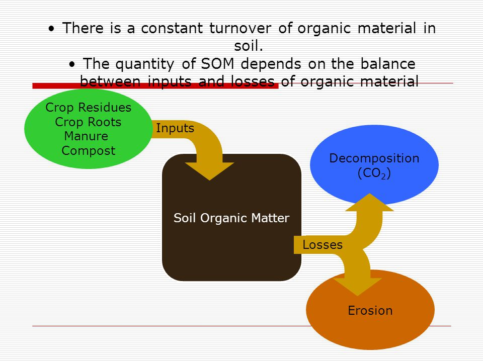 Decomposition (CO 2 ) Erosion Soil Organic Matter Losses Inputs Crop Residues Crop Roots Manure Compost There is a constant turnover of organic materi