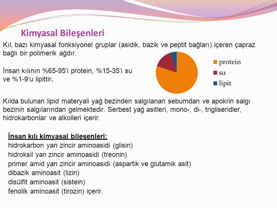 Kimyasal Bileşenleri İnsan kılı kimyasal bileşenleri: hidrokarbon yan zincir aminoasidi (glisin) hidroksil yan zincir aminoasidi (treonin) primer amid yan zincir aminoasidi (aspartik ve glutamik asit) dibazik aminoasit (lizin) disülfit aminoasit (sistein) fenolik aminoasit (tirozin) içerir.