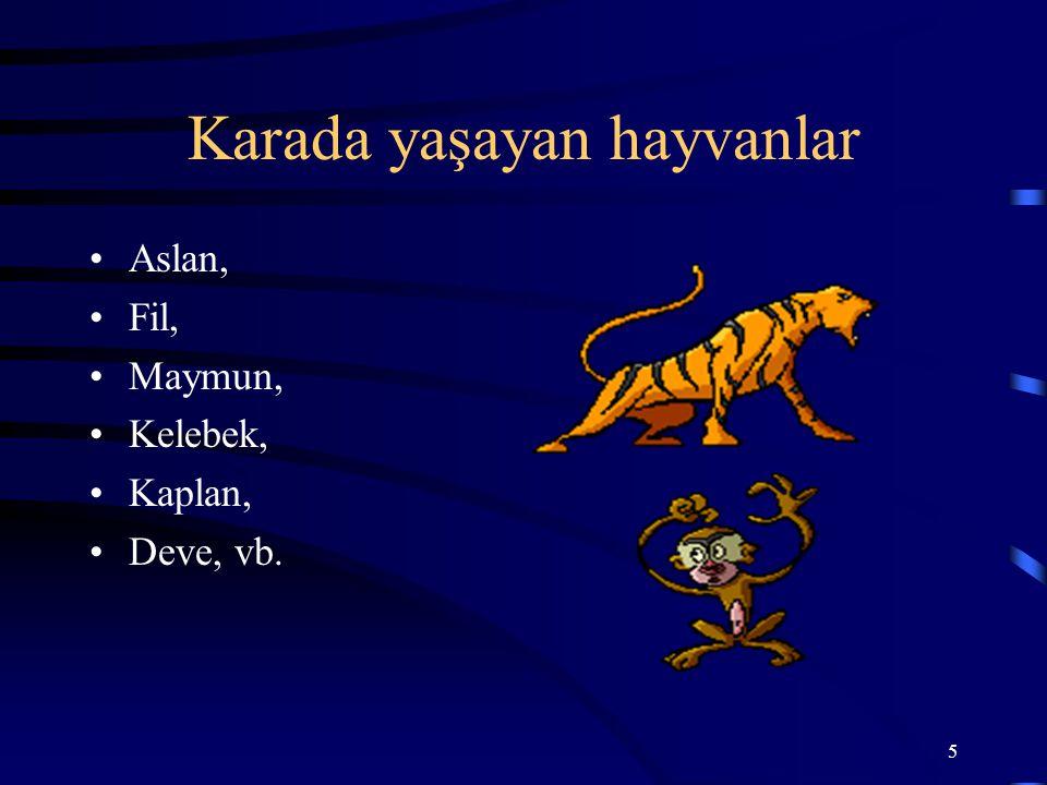 5 Karada yaşayan hayvanlar Aslan, Fil, Maymun, Kelebek, Kaplan, Deve, vb.