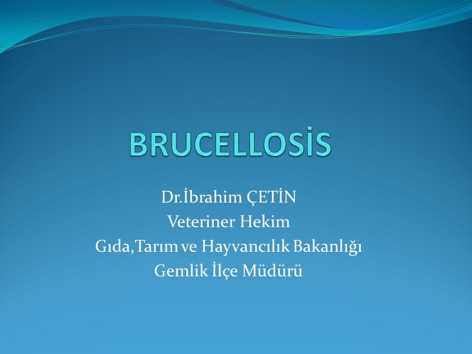 BRUSELLOZ Brucellosis,hayvanlarda Bang Hastalığı,insanlarda ise inişli çıkışlı humma veya Malta humması olarak bilinir.