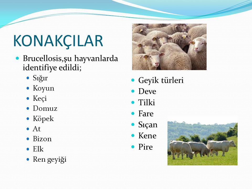 Domuzlarda,sığırlarda ve keçilerde,sürüde brucellosis'i tesbit etmek için testler yapılır,bu yüzden her hayvan teste tabi tutulmaz.