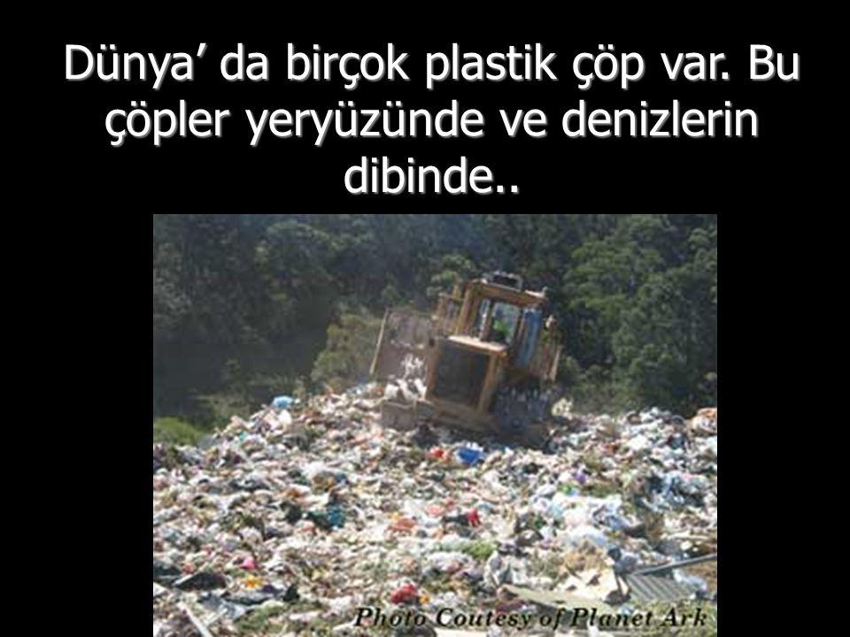 Dünya' da birçok plastik çöp var. Bu çöpler yeryüzünde ve denizlerin dibinde..