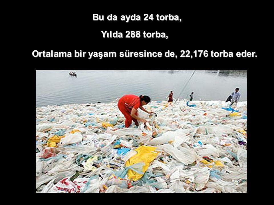 Bu da ayda 24 torba, Yılda 288 torba, Ortalama bir yaşam süresince de, 22,176 torba eder.