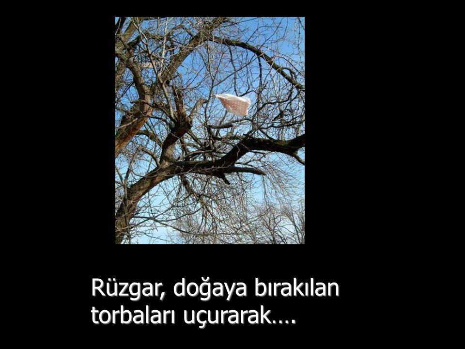 Rüzgar, doğaya bırakılan torbaları uçurarak….