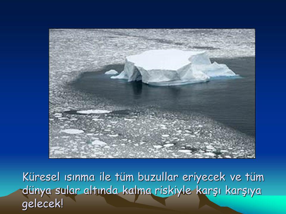 Küresel ısınma ile tüm buzullar eriyecek ve tüm dünya sular altında kalma riskiyle karşı karşıya gelecek!