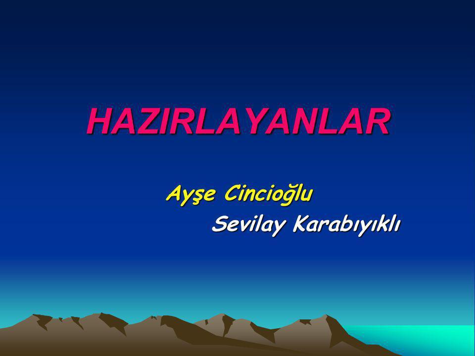 HAZIRLAYANLAR Ayşe Cincioğlu Sevilay Karabıyıklı Sevilay Karabıyıklı