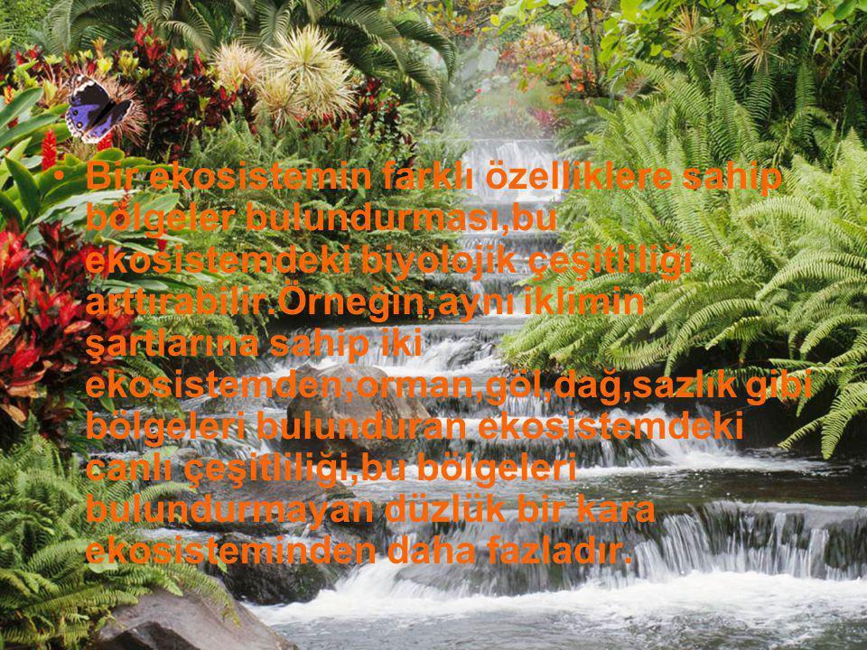 Bir ekosistemin farklı özelliklere sahip bölgeler bulundurması,bu ekosistemdeki biyolojik çeşitliliği arttırabilir.Örneğin;aynı iklimin şartlarına sah