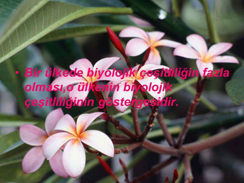 Bir ülkede biyolojik çeşitliliğin fazla olması,o ülkenin biyolojik çeşitliliğinin göstergesidir.