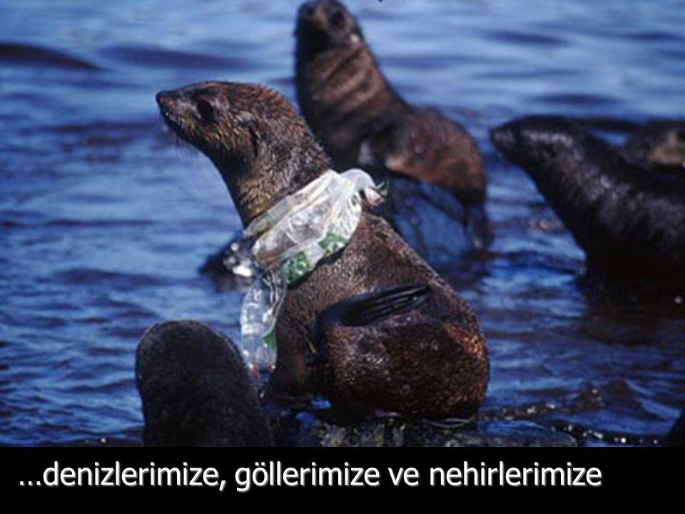 Yemek sanıp yedikten sonra ölüyorlar. - World Wildlife Fund Report 2005