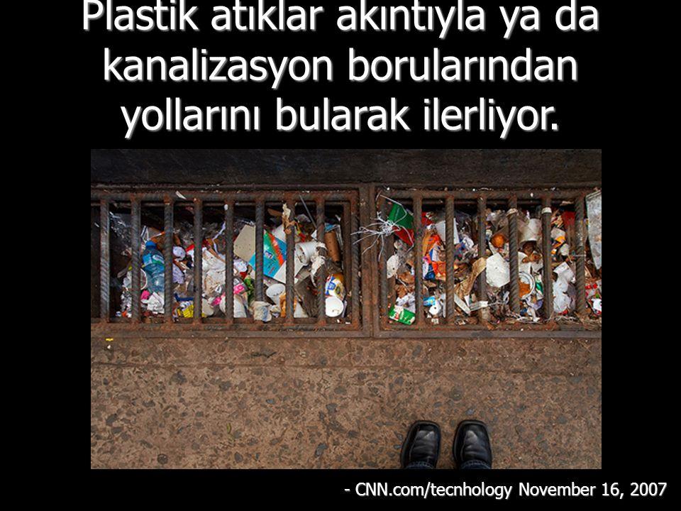 Spitzbergen yakınlarındaki Arktik dairenin kuzeyinde ve Falkland adaları kadar güneyde plastik atıklar bulunmuştur.