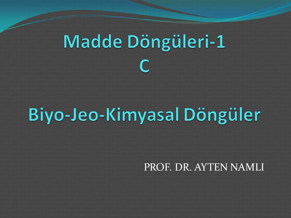 PROF. DR. AYTEN NAMLI