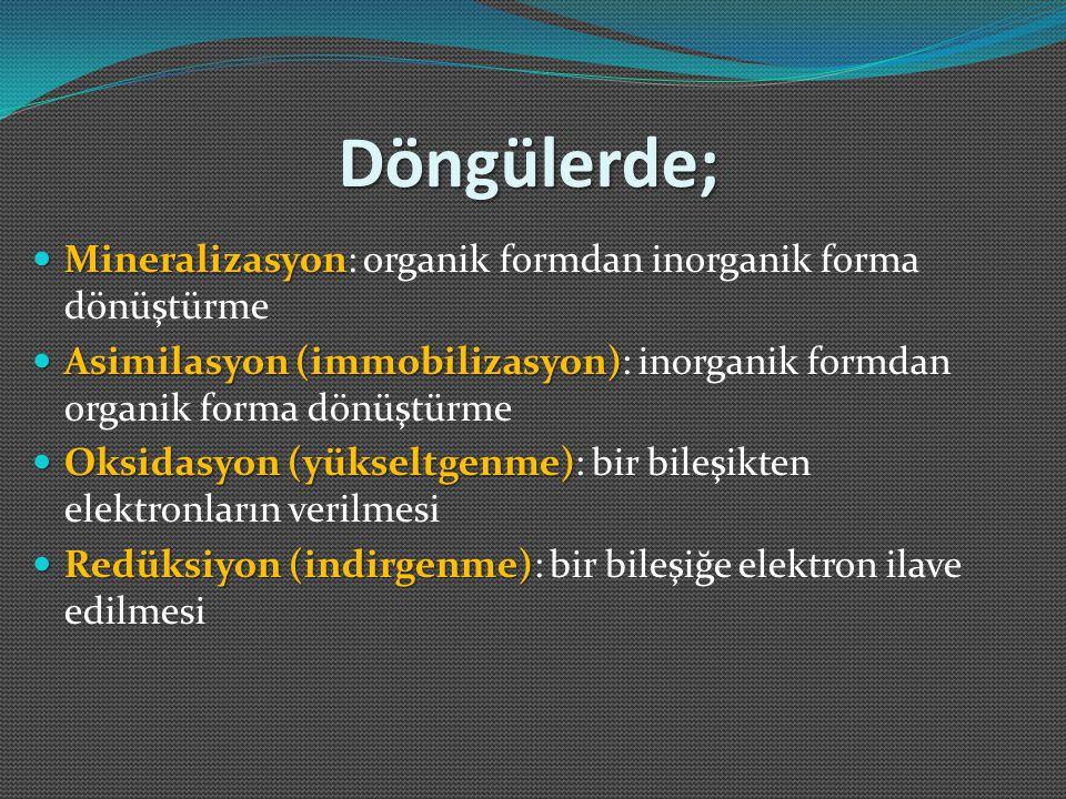 Döngülerde; Mineralizasyon Mineralizasyon: organik formdan inorganik forma dönüştürme Asimilasyon (immobilizasyon) Asimilasyon (immobilizasyon): inorg