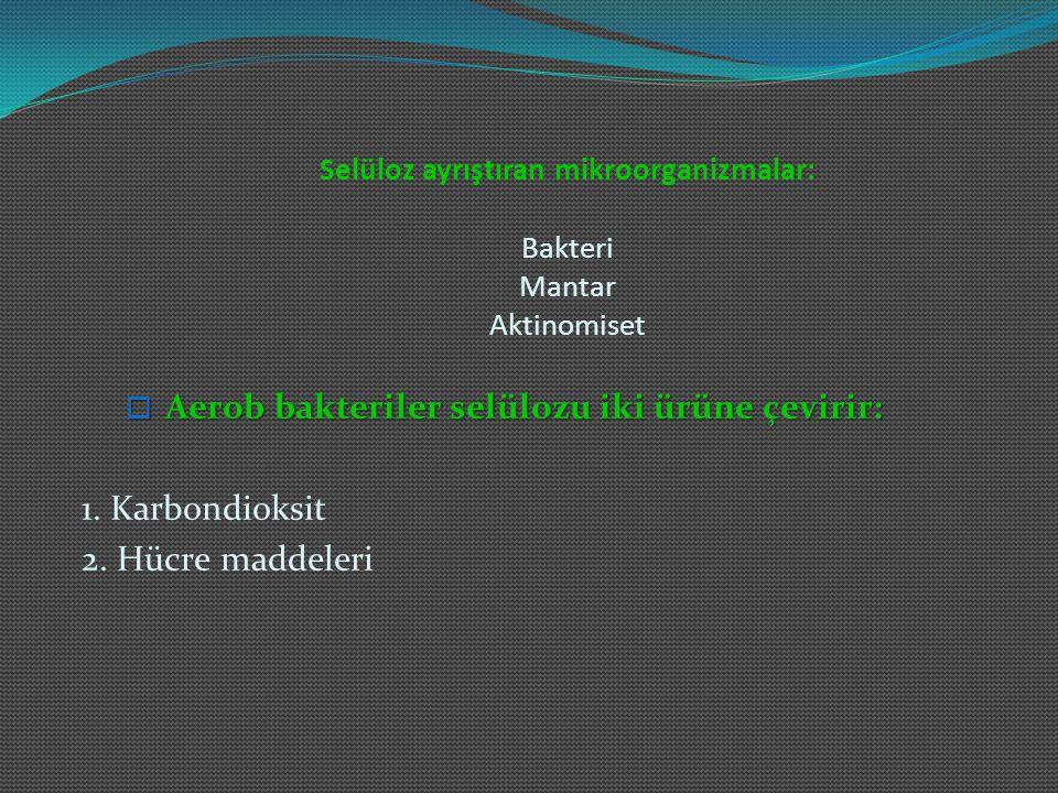 Selüloz ayrıştıran mikroorganizmalar: Bakteri Mantar Aktinomiset  Aerob bakteriler selülozu iki ürüne çevirir: 1. Karbondioksit 2. Hücre maddeleri