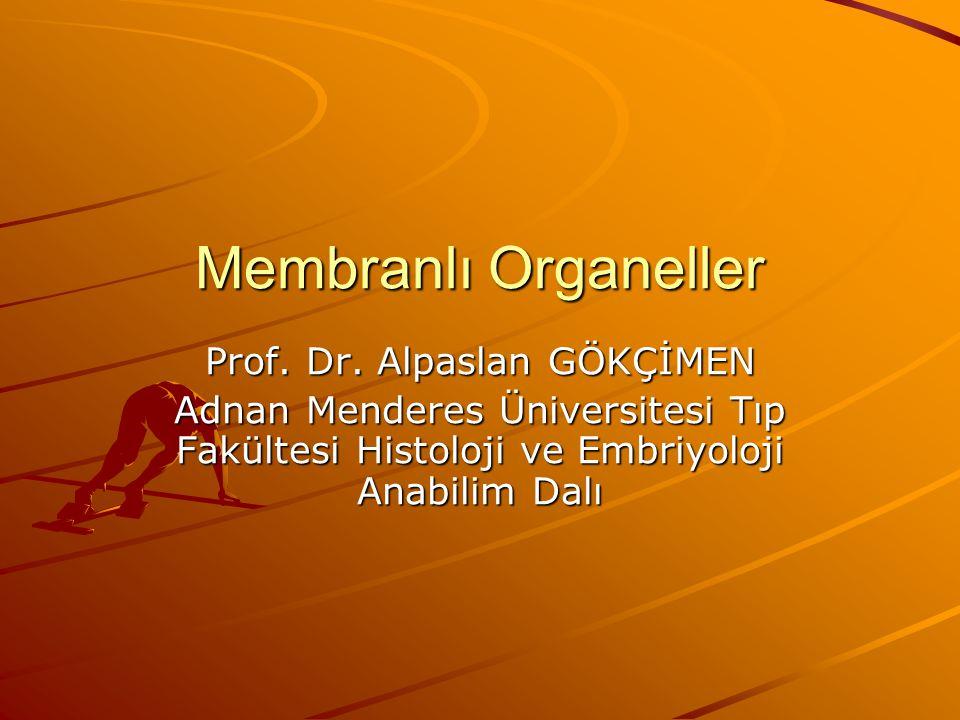 Membranlı Organeller Prof. Dr. Alpaslan GÖKÇİMEN Adnan Menderes Üniversitesi Tıp Fakültesi Histoloji ve Embriyoloji Anabilim Dalı