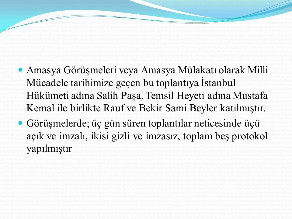 Amasya Görüşmeleri veya Amasya Mülakatı olarak Milli Mücadele tarihimize geçen bu toplantıya İstanbul Hükümeti adına Salih Paşa, Temsil Heyeti adına M