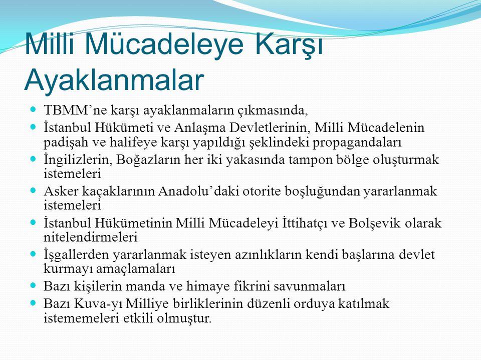 Milli Mücadeleye Karşı Ayaklanmalar TBMM'ne karşı ayaklanmaların çıkmasında, İstanbul Hükümeti ve Anlaşma Devletlerinin, Milli Mücadelenin padişah ve