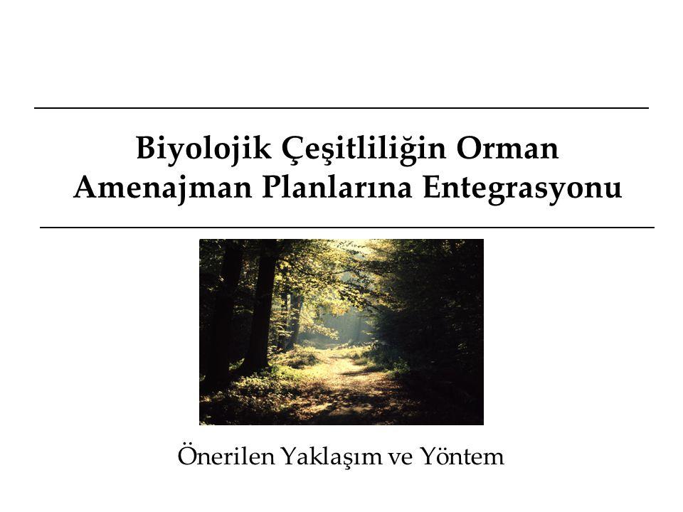 Biyolojik Çeşitliliğin Öğeleri Tür Çeşitliliği Ekosistem Çeşitliliği Ekolojik ve Evrimsel Süreçler Hedef türler Orman Dereboyu Yüksek dağ Biyolojik çeşitliliğin bileşenleri Doğal yaşlı ormanlar Kalıntı türler Relikt ekosistemler