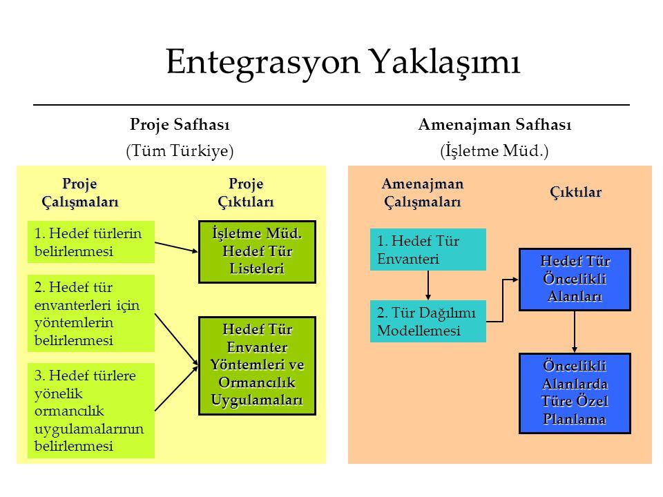 Hedef Tür Envanterleri 1.Rehber kitaplardaki tür habitat tercihi bilgileri ve alan haritaları kullanılarak envanter yapılacak örnekleme alanların belirlenmesi 2.Rehber kitapta verilen envanter yöntemlerine göre örnekleme tipi/sıklığı/vs.