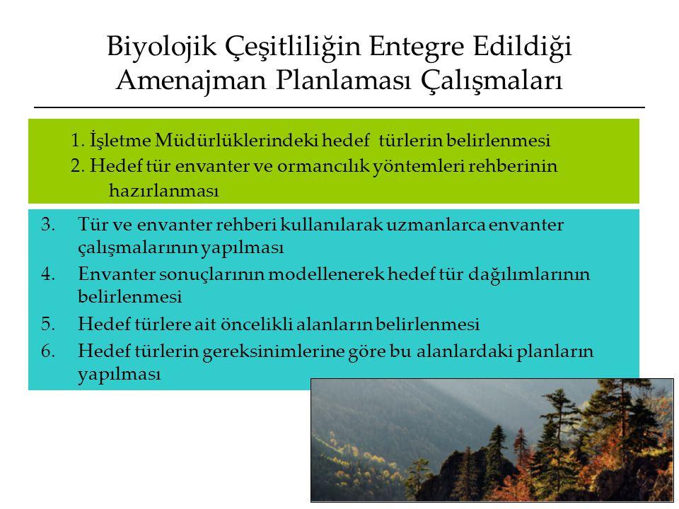 Biyolojik Çeşitliliğin Entegre Edildiği Amenajman Planlaması Çalışmaları 3.Tür ve envanter rehberi kullanılarak uzmanlarca envanter çalışmalarının yap