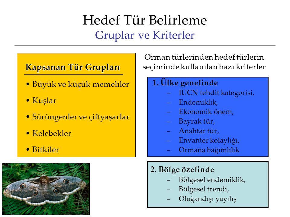 Hedef Tür Belirleme Gruplar ve Kriterler 1.