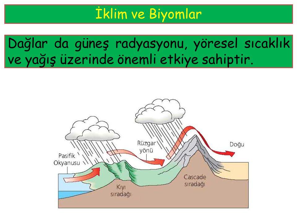 Büyük su kütlelerine yakınlık ve dağ sıraları gibi topoğrafik özellikler, bölgesel ölçekte, iklimi farklı alanlar yaratabilir. İklimdeki bu bölgesel,