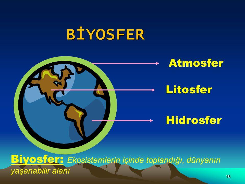 16 Atmosfer Litosfer Hidrosfer Biyosfer: Ekosistemlerin içinde toplandığı, dünyanın yaşanabilir alanı BİYOSFER