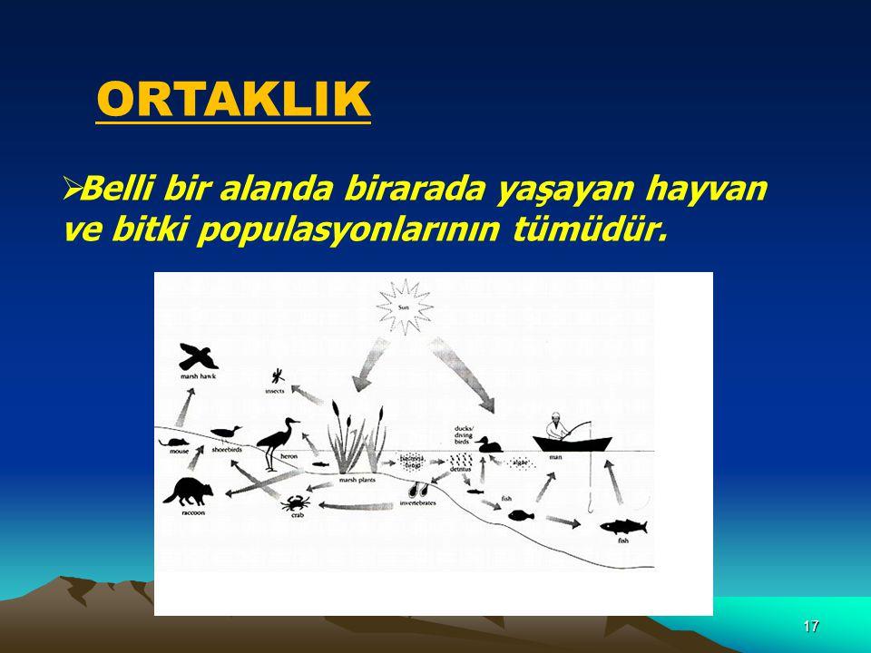 17 ORTAKLIK  Belli bir alanda birarada yaşayan hayvan ve bitki populasyonlarının tümüdür.