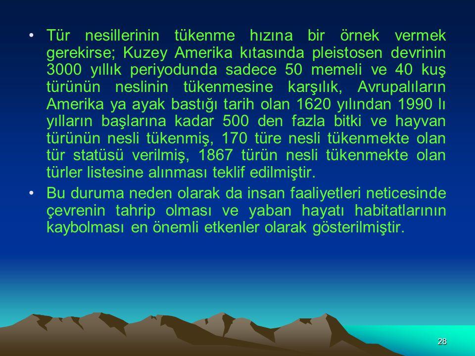 28 Tür nesillerinin tükenme hızına bir örnek vermek gerekirse; Kuzey Amerika kıtasında pleistosen devrinin 3000 yıllık periyodunda sadece 50 memeli ve