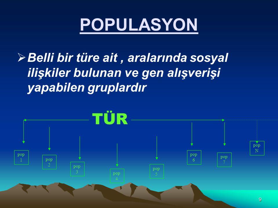 9 POPULASYON  Belli bir türe ait, aralarında sosyal ilişkiler bulunan ve gen alışverişi yapabilen gruplardır TÜR pop 1 pop 2 pop 3 pop 4 pop 5 pop 6