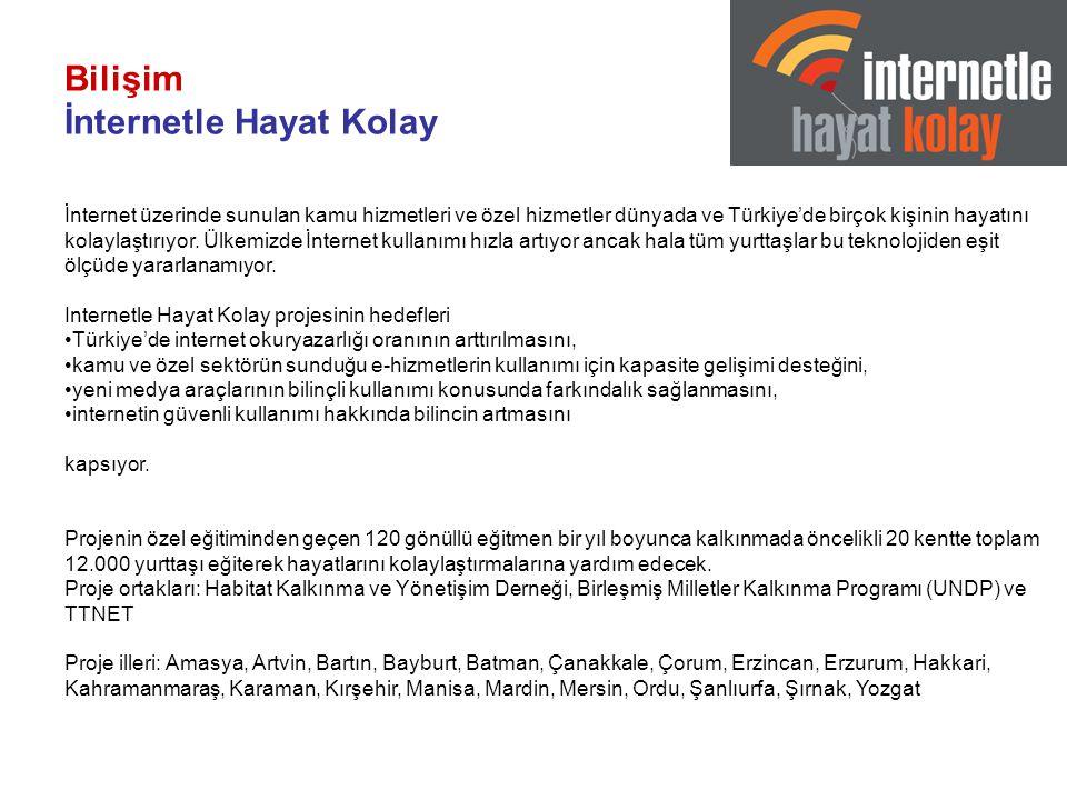 Bilişim İnternetle Hayat Kolay İnternet üzerinde sunulan kamu hizmetleri ve özel hizmetler dünyada ve Türkiye'de birçok kişinin hayatını kolaylaştırıyor.
