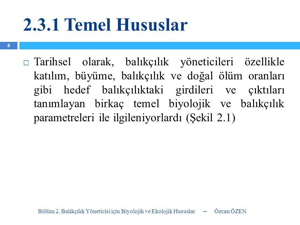 2.3.1 Temel Hususlar Bölüm 2.