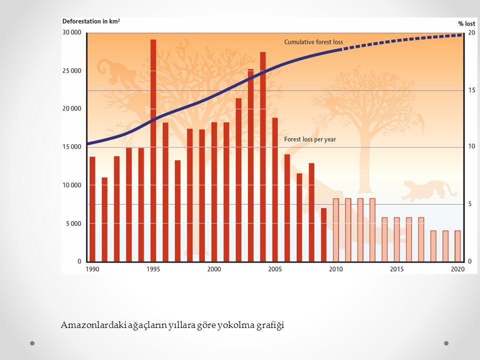 Amazonlardaki ağaçların yıllara göre yokolma grafiği