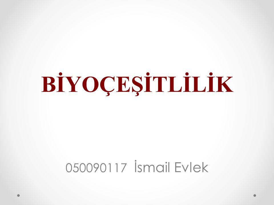 BİYOÇEŞİTLİLİK 050090117 İsmail Evlek