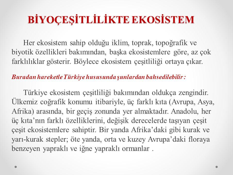 TÜRKİYE'DE BİYOÇEŞİTLİLİK Türkiye biyolojik çeşitlilik açısından küçük bir kıta özelliği göstermektedir.