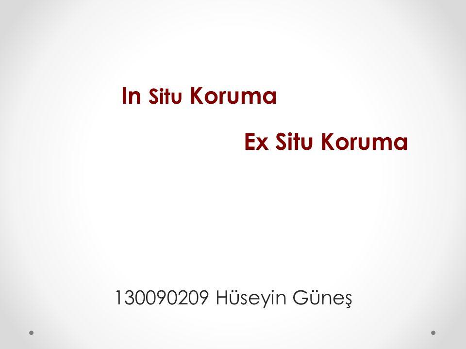 In Situ Koruma Ex Situ Koruma 130090209 Hüseyin Güneş