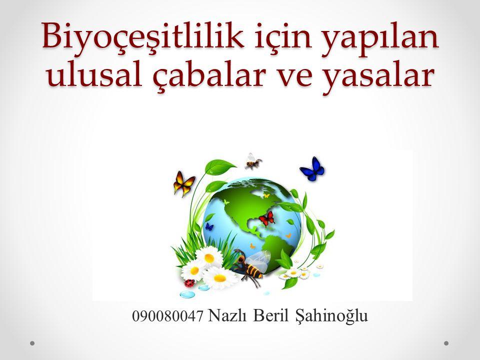Biyoçeşitlilik için yapılan ulusal çabalar ve yasalar 090080047 Nazlı Beril Şahinoğlu