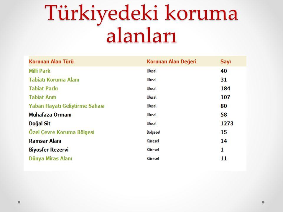 Türkiyedeki koruma alanları