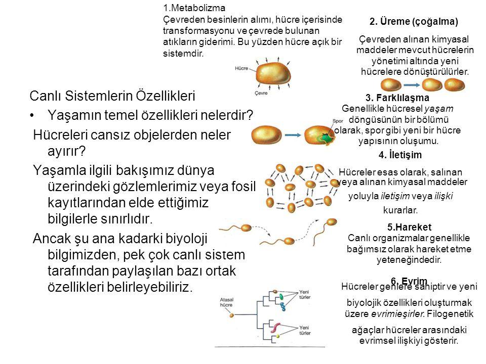 Canlı Sistemlerin Özellikleri Yaşamın temel özellikleri nelerdir? Hücreleri cansız objelerden neler ayırır? Yaşamla ilgili bakışımız dünya üzerindeki
