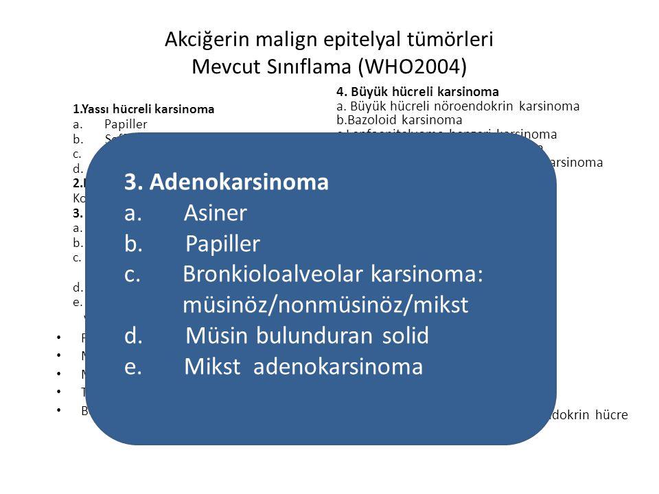 Akciğerin malign epitelyal tümörleri Mevcut Sınıflama (WHO2004) 1.Yassı hücreli karsinoma a. Papiller b. Şeffaf (berrak) hücreli c. Küçük hücreli d. B