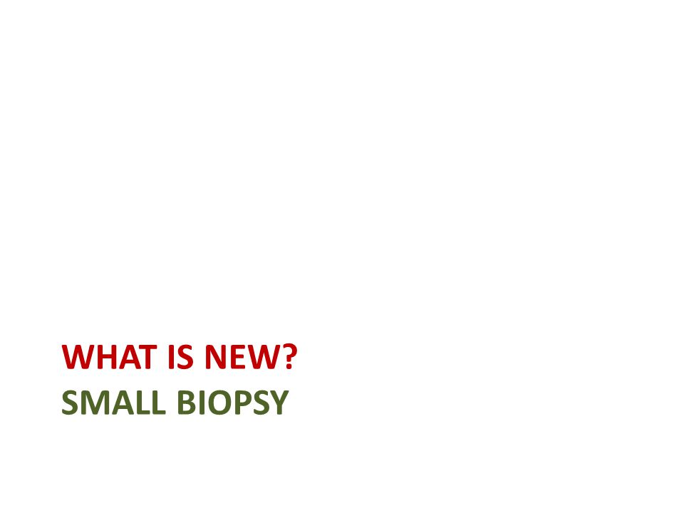 WHAT IS NEW? SMALL BIOPSY