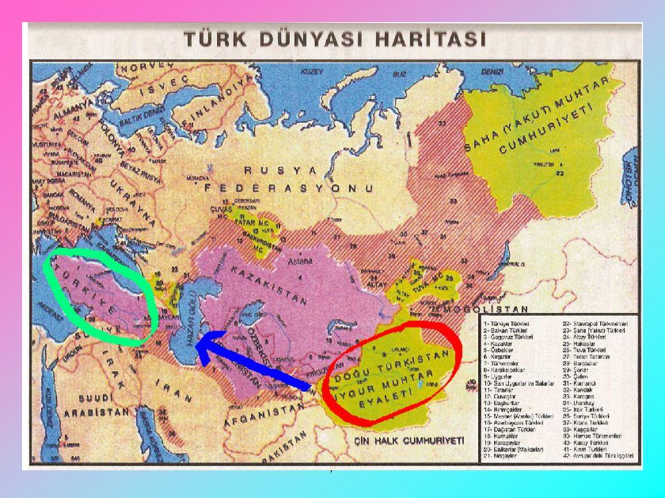 KARGI LİSESİ ÇORUM/ KARGI AHMET YESEVİ ve DİVAN-I HİKMET www.edebiyatdersi.net